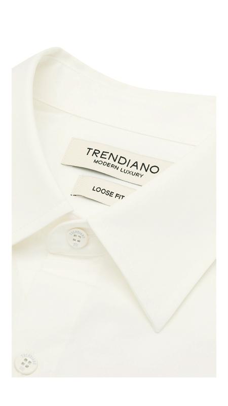 尖领链条刺绣休闲衬衫